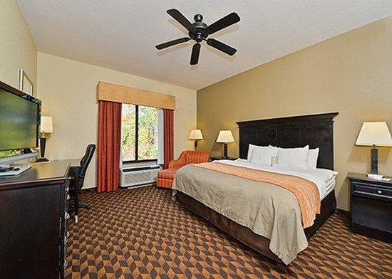 Comfort Inn & Suites: Non-Smoking King Room