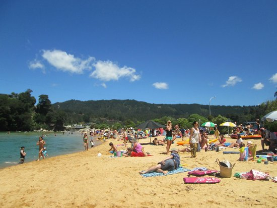 Kaiteriteri beach in the summer