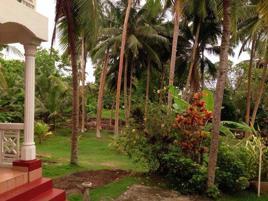 Villa Balapitiya Beach: Garden