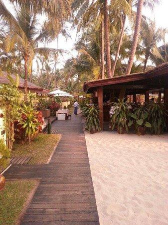 Bayview - The Beach Resort: Am Strand mit Blick zum Restaurant