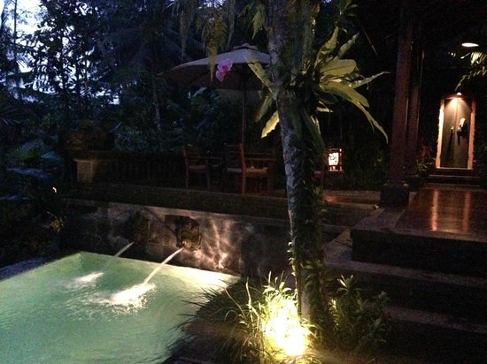 Bidadari Private Villas & Retreat: very private