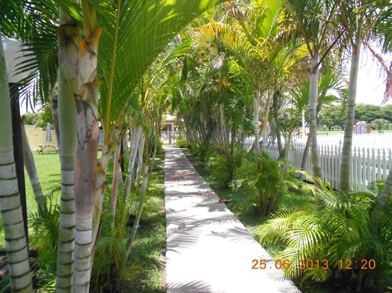 Miami Everglades Resort: Walkway to the pool