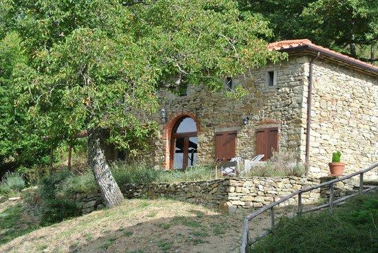 Farmhouse La Chiusa: 2 wunderschöne Appartements