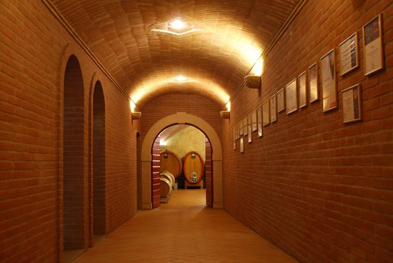 Amarone Brunelli - Wines since 1936: Way to the cella... Amarone ageing.