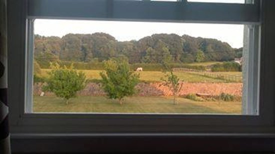 Elberry Farm Bed & Breakfast: View from a room