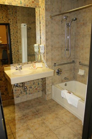 Great Wolf Lodge: Bathroom in our room