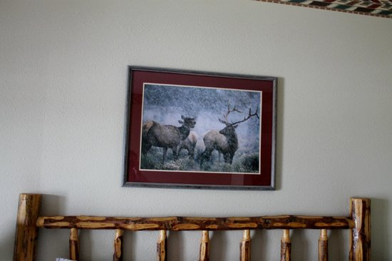 Great Wolf Lodge: Decor in or room