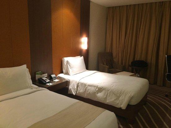 Holiday Inn Mumbai International Airport: Room2