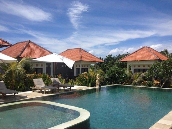 Bali Bule Homestay: Poolside