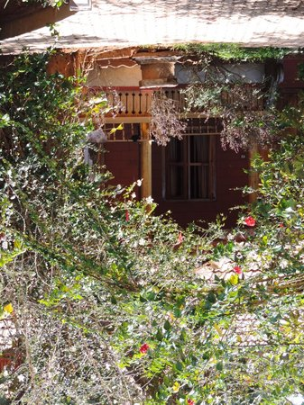 Ayurveda Yoga Villa : The back garden cottage behind the mainhouse