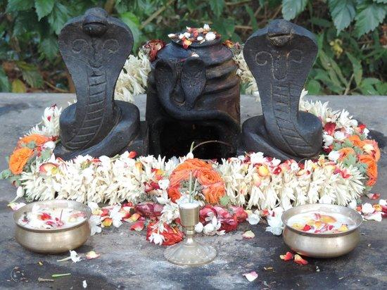 Ayurveda Yoga Villa: Shiva altar