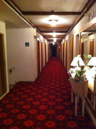 Grand Hotel du Parc : Coulir d'accès chambres