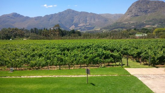 Franschhoek Kitchen: Lovely views from lunch table