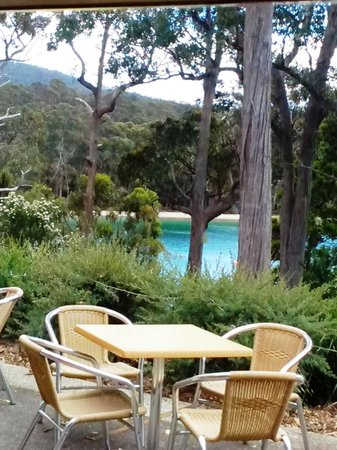 Stewarts Bay Lodge : View from restaurant