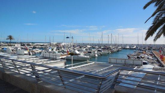 Marriott's Marbella Beach Resort: Marbella marina