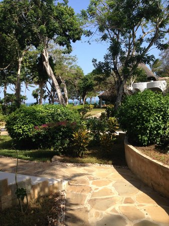 Ocean Village Club: jardin