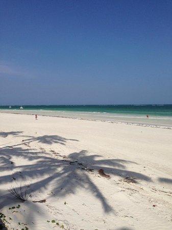 Ocean Village Club: vue de la plage privée
