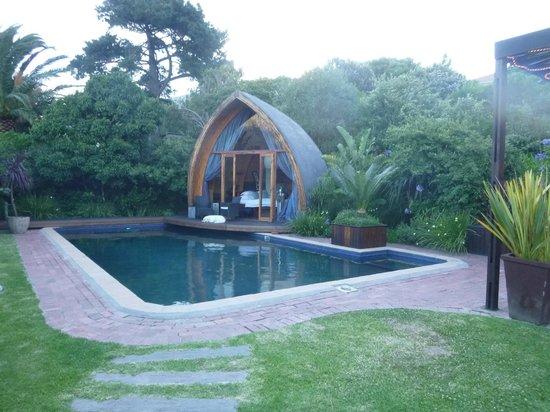 CUBE Guest House: Herrlicher Pool