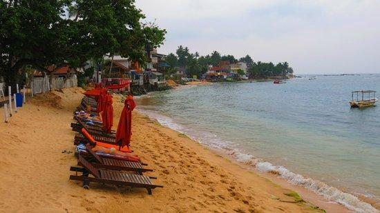 Calamander Unawatuna Beach: к