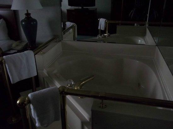 Quality Inn & Suites: Whirlpool room