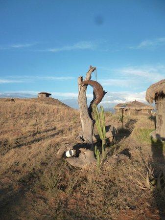 Africa Amini Maasai Lodge: the lodge