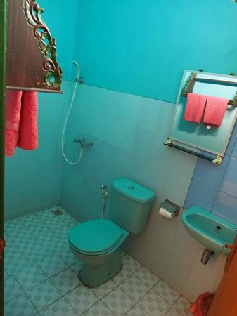 Lava View Lodge : Bathroom with leaking toilet.