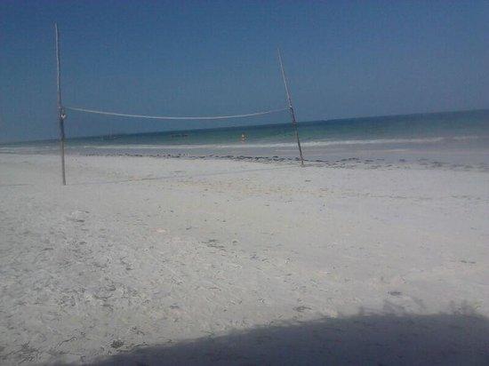 Waridi Beach Resort & Spa : spiaggia campo di pallav