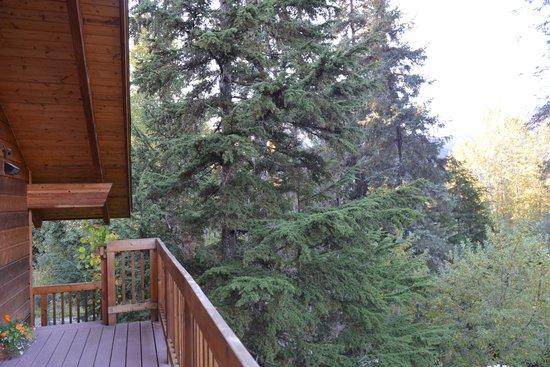 Alpine Aria Chalet Bed and Breakfast: Vue du salon