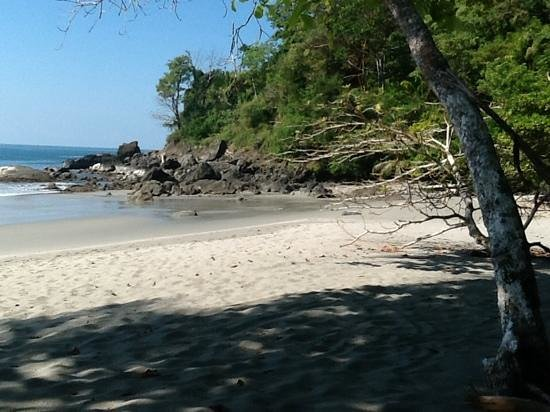 Arenas del Mar Beachfront & Rainforest Resort : private beach on the property