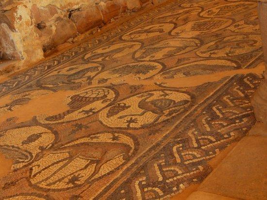 Byzantine Church: ノアの方舟に乗せられた動物を現したモザイク画