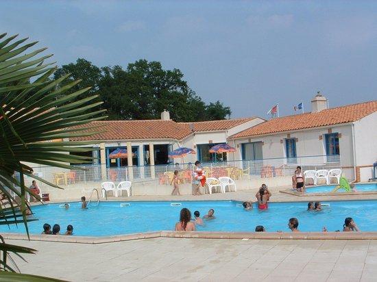 La piscine picture of camping le bois joli bois de cene for Camping la ciotat avec piscine