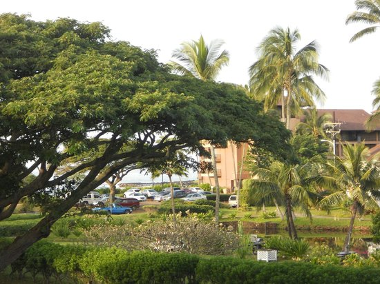 Kiahuna Plantation Resort : nice view from our balcony