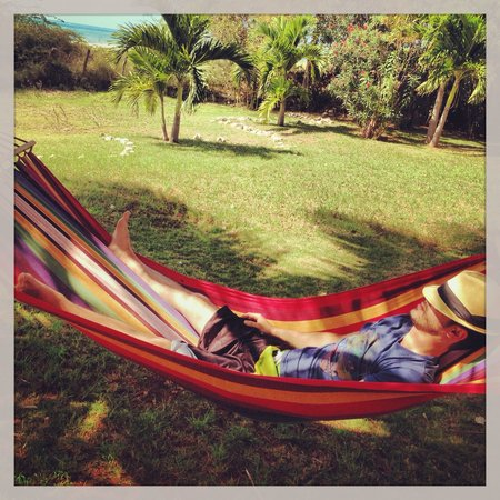 Marblue Villa Suites : Hammocks ready for the taking!