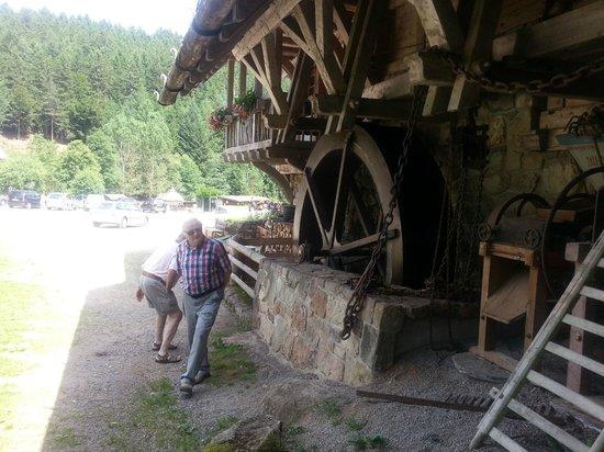 """Tannenmühle"""
