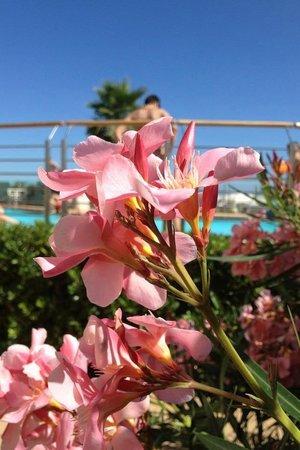 Hotel Brig: Wunderschön