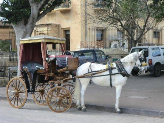 The Plaza & Plaza Regency Hotels: local transport