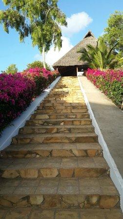 Ngalawa Beach Village : The reception