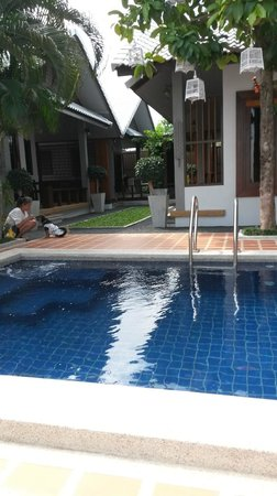 The Nest Samui: Pool and Malee with Gypsy, the High 5 dog!