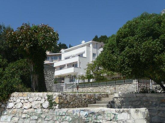 "Apartments Prva maslina : ""Prva maslina"" house"