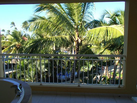 Dreams Punta Cana Resort & Spa: View from the Room