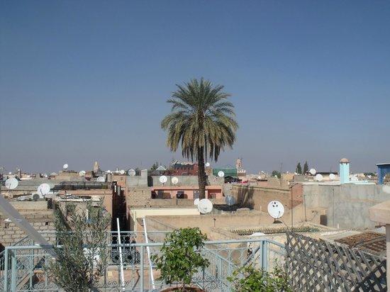 Riad les Hibiscus : Blick von der Dachterasse