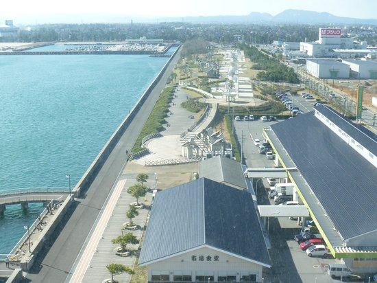 Yume Minato Parkland