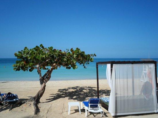 Azul Beach Resort Sensatori Jamaica by Karisma : Grape tree and beach beds..so comfy