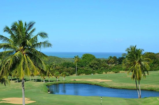 El Conquistador Golf Course: Ocean view