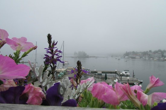 Cap'n Fish's Waterfront Inn: Early morning fog