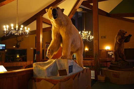 Bears in the lobby