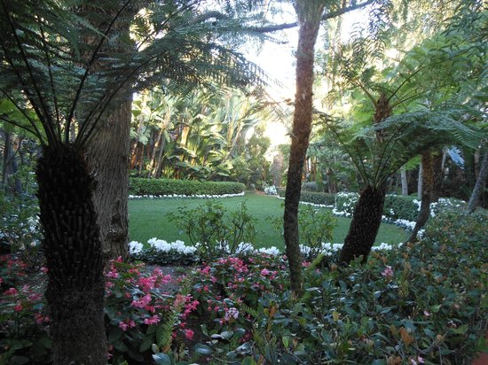 The Beverly Hills Hotel: lush gardens throughout