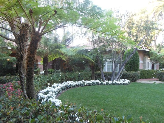 The Beverly Hills Hotel: spectacular flowers in walkways leading to rooms