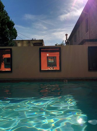 Kimpton Hotel Palomar Los Angeles Beverly Hills: Beautiful pool on a sunny day