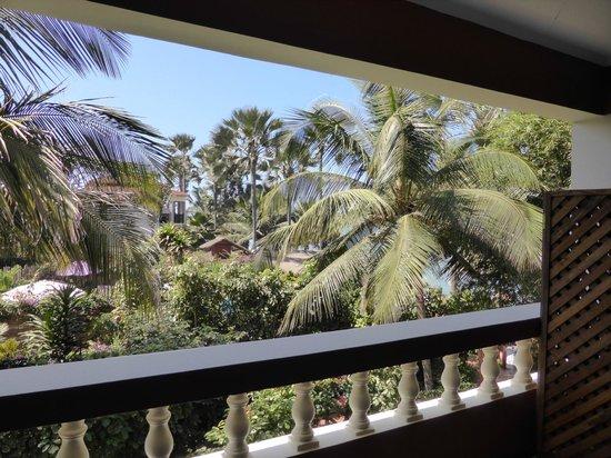 Ngala Lodge: Tree Top Garden View